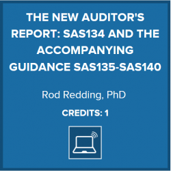 New Auditor's